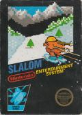 Slalom NES Front Cover