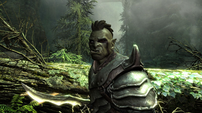 The Elder Scrolls V: Skyrim Screenshot