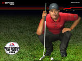 Tiger Woods PGA Tour 2004 Wallpaper