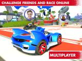 Sonic & All-Stars Racing: Transformed Other