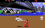 World Karate Championship Screenshot For C64.