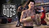 Sleeping Dogs: Martial Arts Pack Other