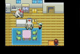 Pokémon Emerald Version Screenshot
