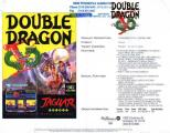 Double Dragon V: The Shadow Falls Other Not very commonly seen.