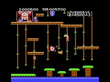 Donkey Kong Junior Screenshot