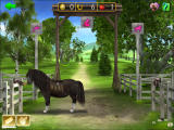 Horse + Pony Magazine: My First Pony Screenshot