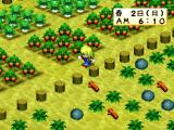 Bokujō Monogatari: Harvest Moon for Girl Screenshot