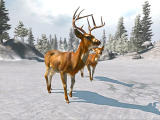 Cabela's Big Game Hunter Screenshot