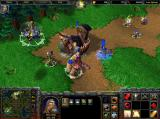 Warcraft III: Reign of Chaos Screenshot Only a scaled-down versions of this screenshot has been preserved