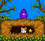 Hamtaro: Ham-Hams Unite! Game Boy Color Bird Nest