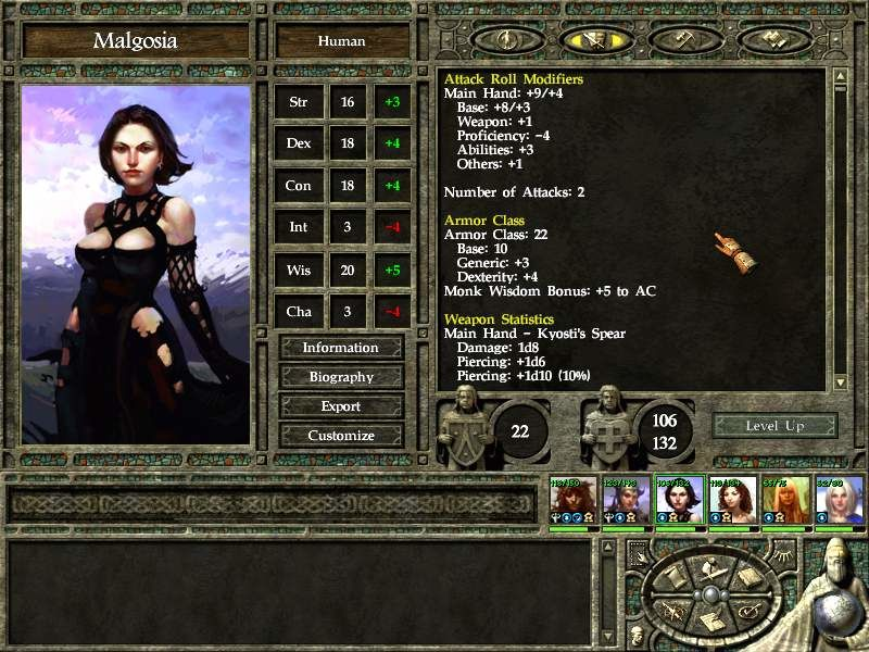Icewind Dale II Windows Stats (one of four screens!)