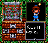 Madō Monogatari II: Arle 16-sai Game Gear You see a funny picture if you drive Arle into the wall