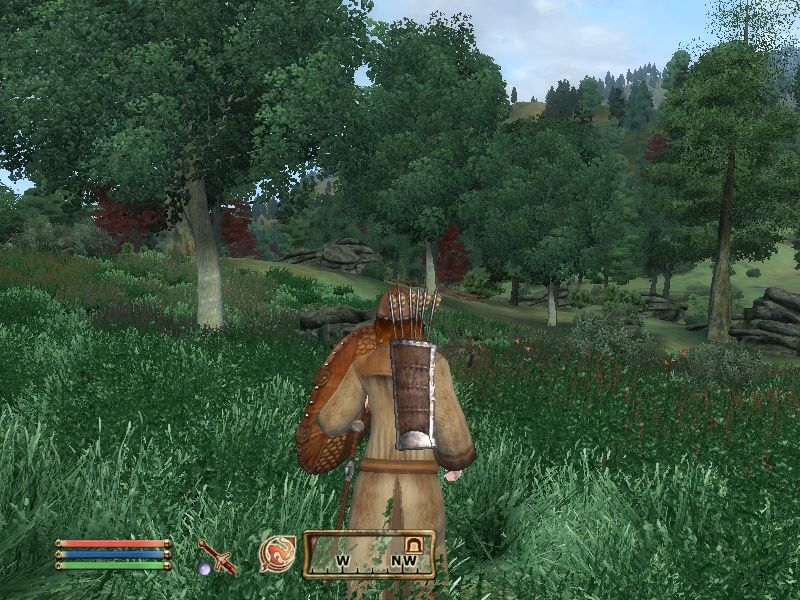 The Elder Scrolls IV: Oblivion Windows Ahh, it feels good to be outside... Looking for a cave now