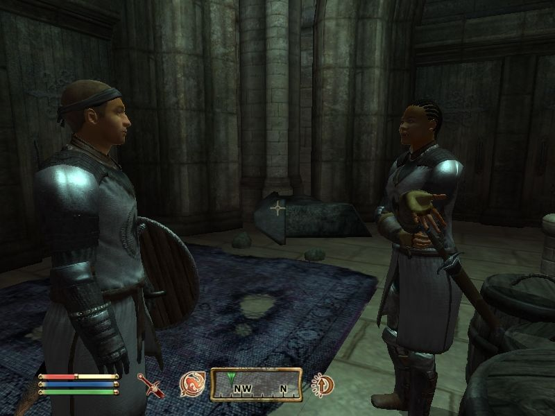 The Elder Scrolls IV: Oblivion Windows NPCs will often have a short conversation