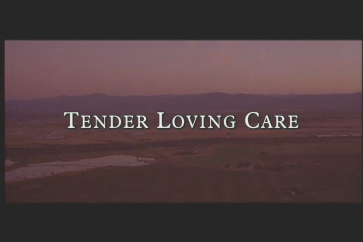 Tender Loving Care Windows The opening title (DVD version)