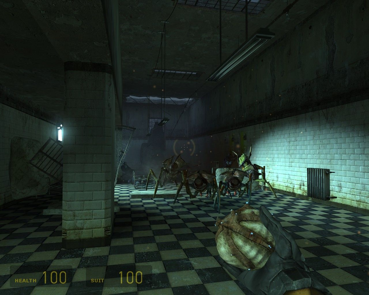 Half-Life 2 Windows My Ant Lion army attacking Combine soldiers.