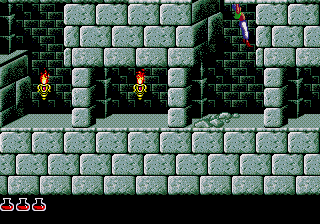 Prince of Persia SEGA CD Graphics are midway between the 8 and 16 bit versions.