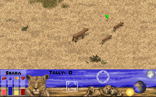 Lion DOS First scenario - lioness with cubs