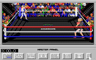 4-D Boxing Amiga The fight begins (default ring view)