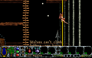 Inner Worlds DOS Climbing a pole