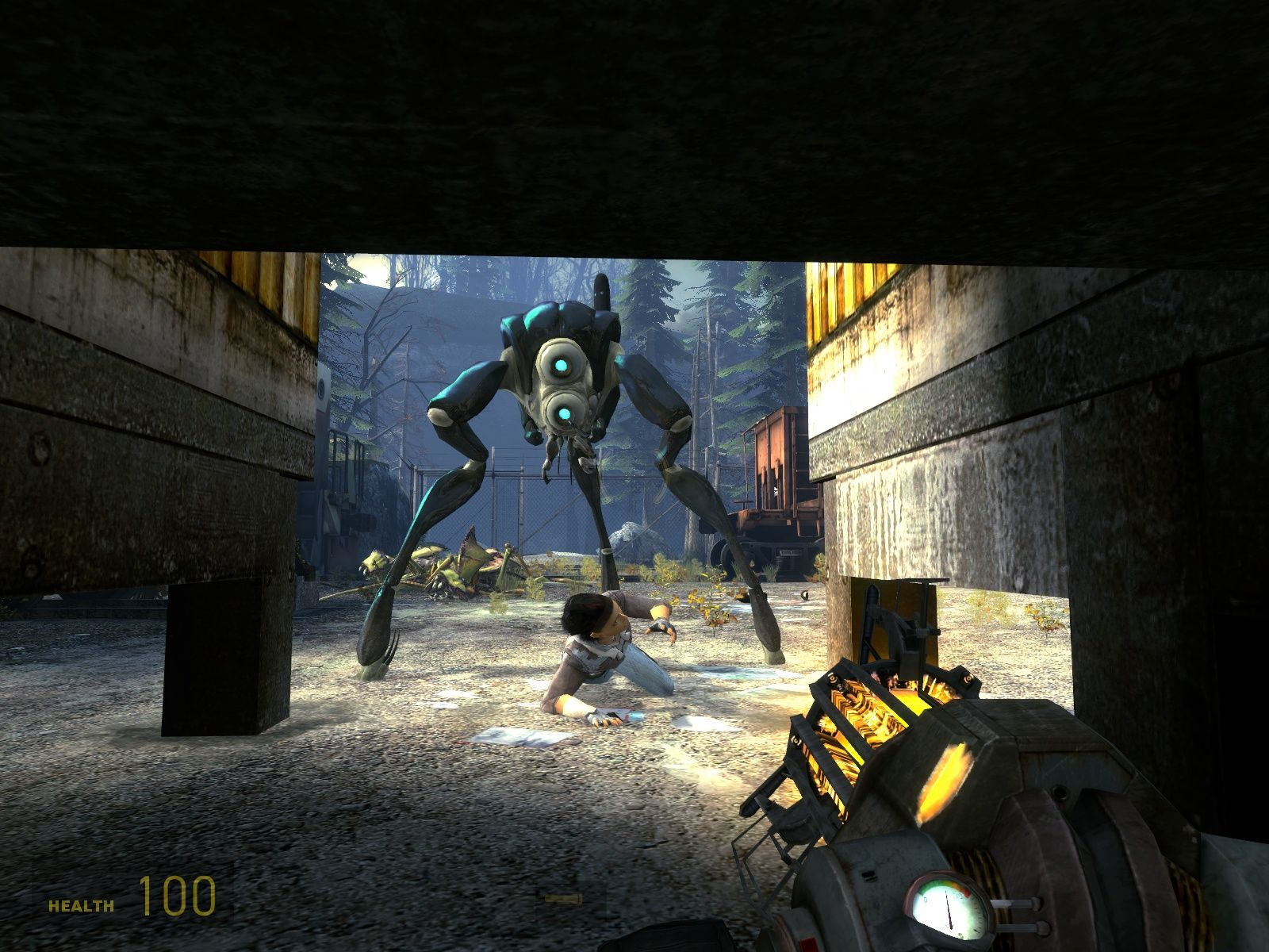Half-Life 2: Episode Two Windows A hunter attacks Alyx (one of the new enemies).