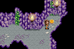 Lufia: The Ruins of Lore Game Boy Advance You should put the items on the switches to keep some doors in open state