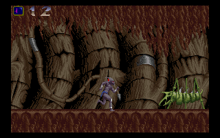 Shadow of the Beast Amiga After entering a hollow tree, you reach some underground caves.