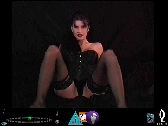 http://www.mobygames.com/images/shots/l/315531-diva-x-ariana-windows-3-x-screenshot-start-of-cybersex-simulation.png