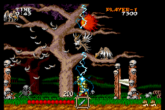 Ghouls 'N Ghosts SuperGrafx Using a spell to kill several enemies at once