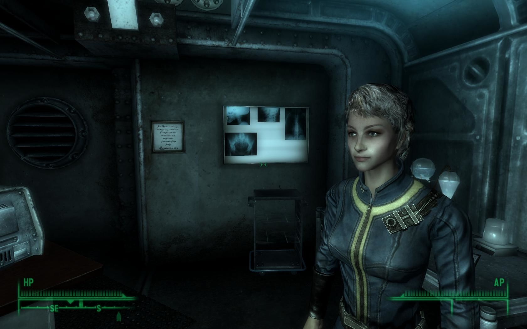 Fallout 3 Windows Your (well, my) character at age 16