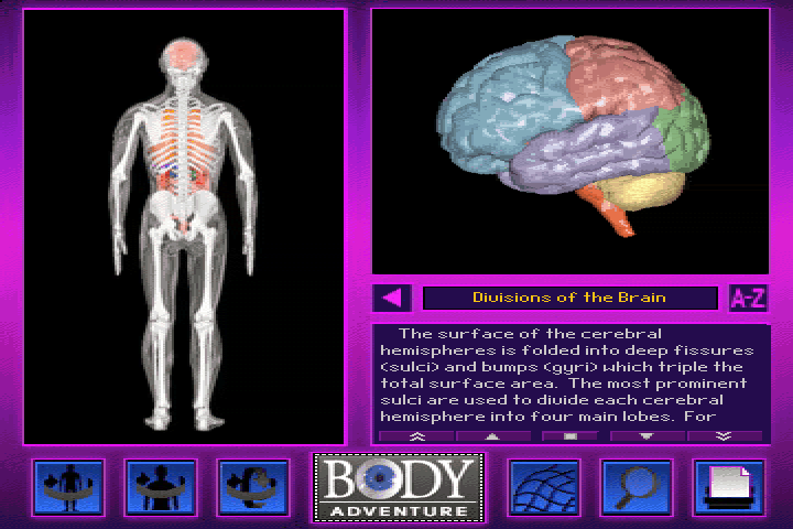 3-D Body Adventure DOS And now more about the brain.