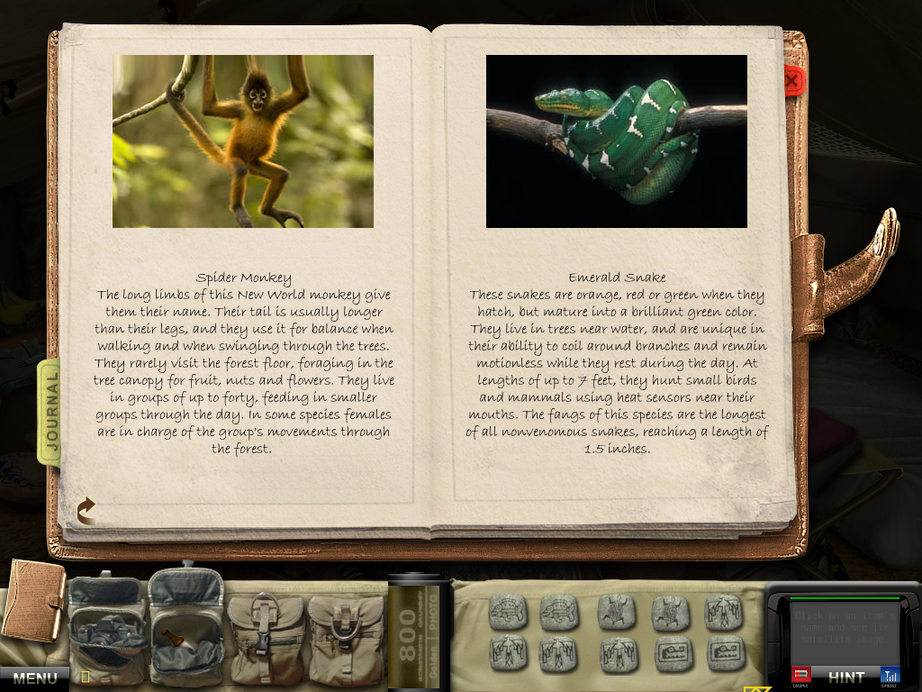 Nat Geo Adventure: Lost City of Z Windows Spider monkey and emerald snake