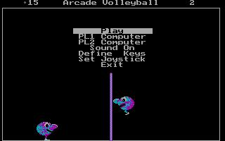 Arcade Volleyball DOS Game finished