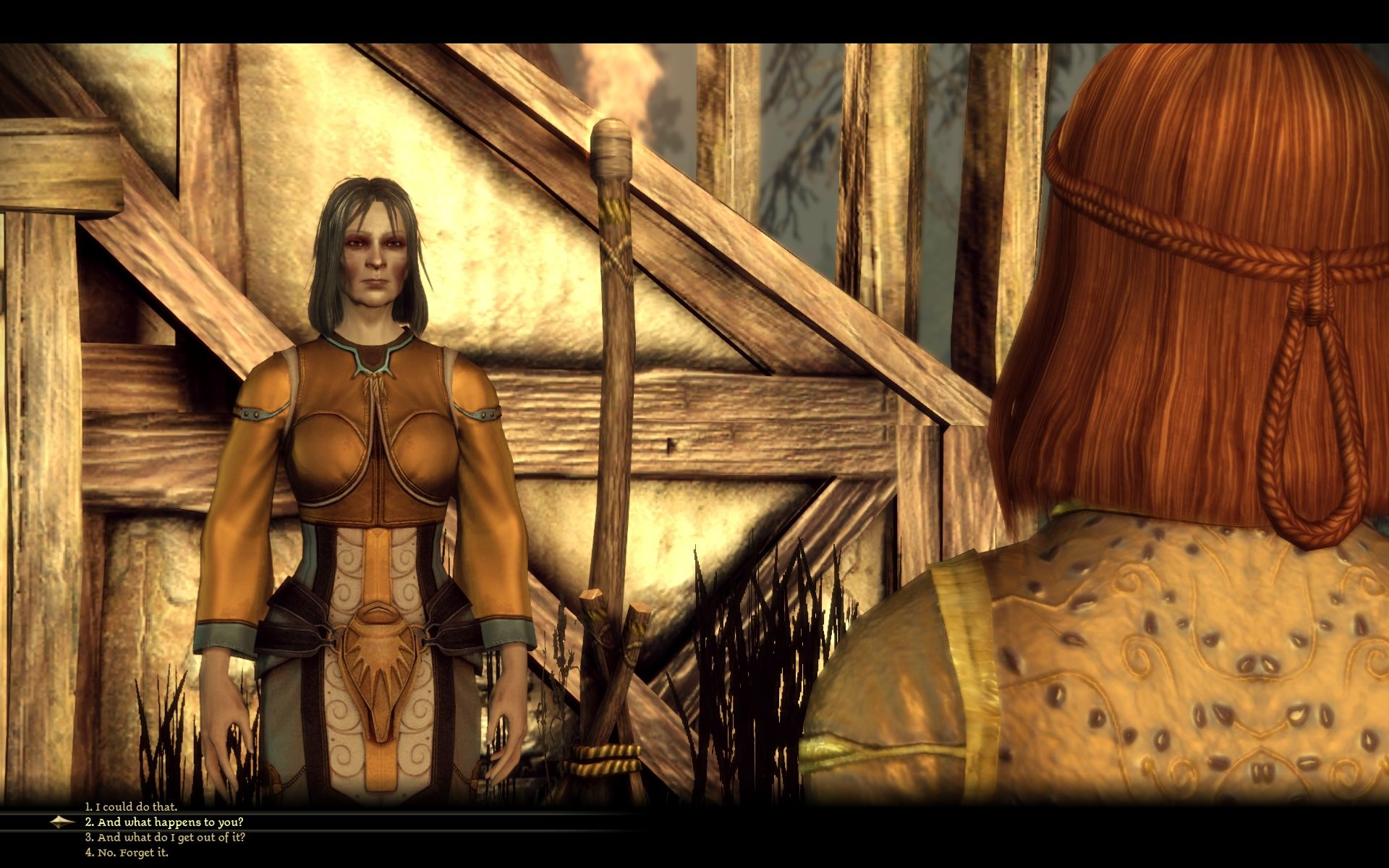 Dragon Age: Origins Windows Flemeth, the legend in flesh and blood.