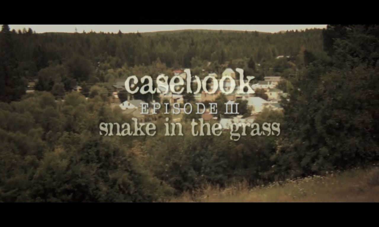 Casebook: Episode III - Snake in the Grass Windows Title screen