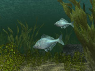 Reel Fishing PlayStation Introduction
