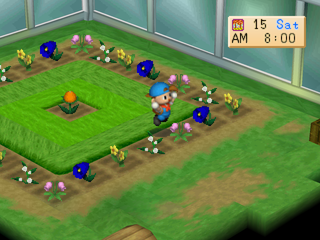 Harvest Moon: Back to Nature PlayStation Greenhouse