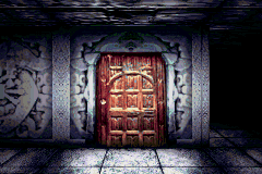Wizardry: Summoner Game Boy Advance Wonder what's behind this door?