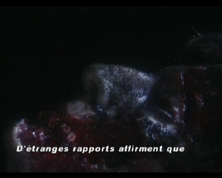 Resident Evil: Director's Cut PlayStation (French intro) Dead bodies instead of newspaper headlines.