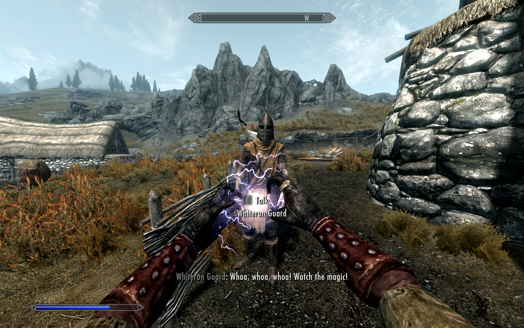 The Elder Scrolls V: Skyrim Windows The constant NPC comments can be funny, at least the first ten times you hear them