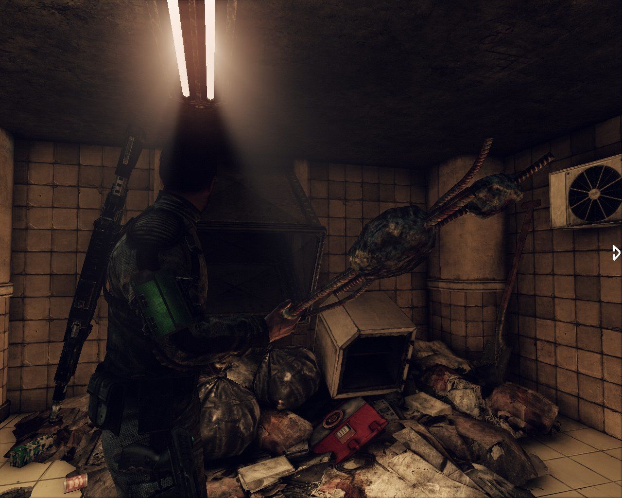 Afterfall: InSanity Windows A very wide range of objects make good melee weapons in this game..