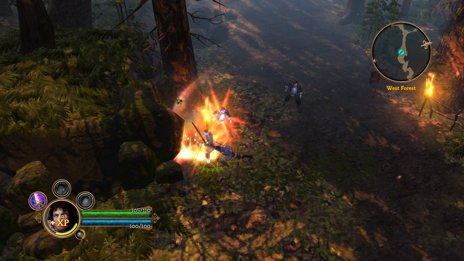 Dungeon Siege III Windows Dealing some serious damage