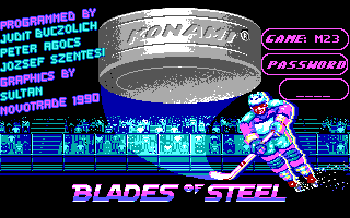 Blades of Steel DOS Title 1 & Manual Protection check (EGA)