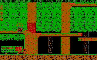 Bionic Commando DOS The game begins here (CGA)