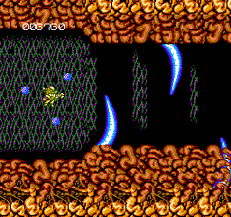 Abadox: The Deadly Inner War NES Flying into the mouth