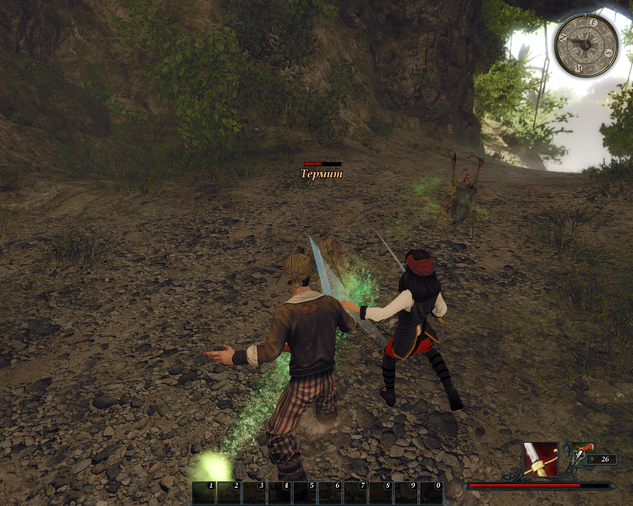 Risen 2: Dark Waters Windows Fighting acid-spitting termites with Patty