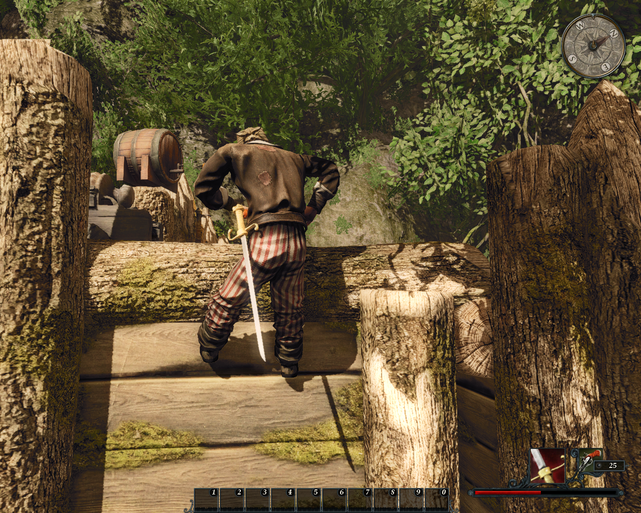 Risen 2: Dark Waters Windows The hero can climb on certain ledges