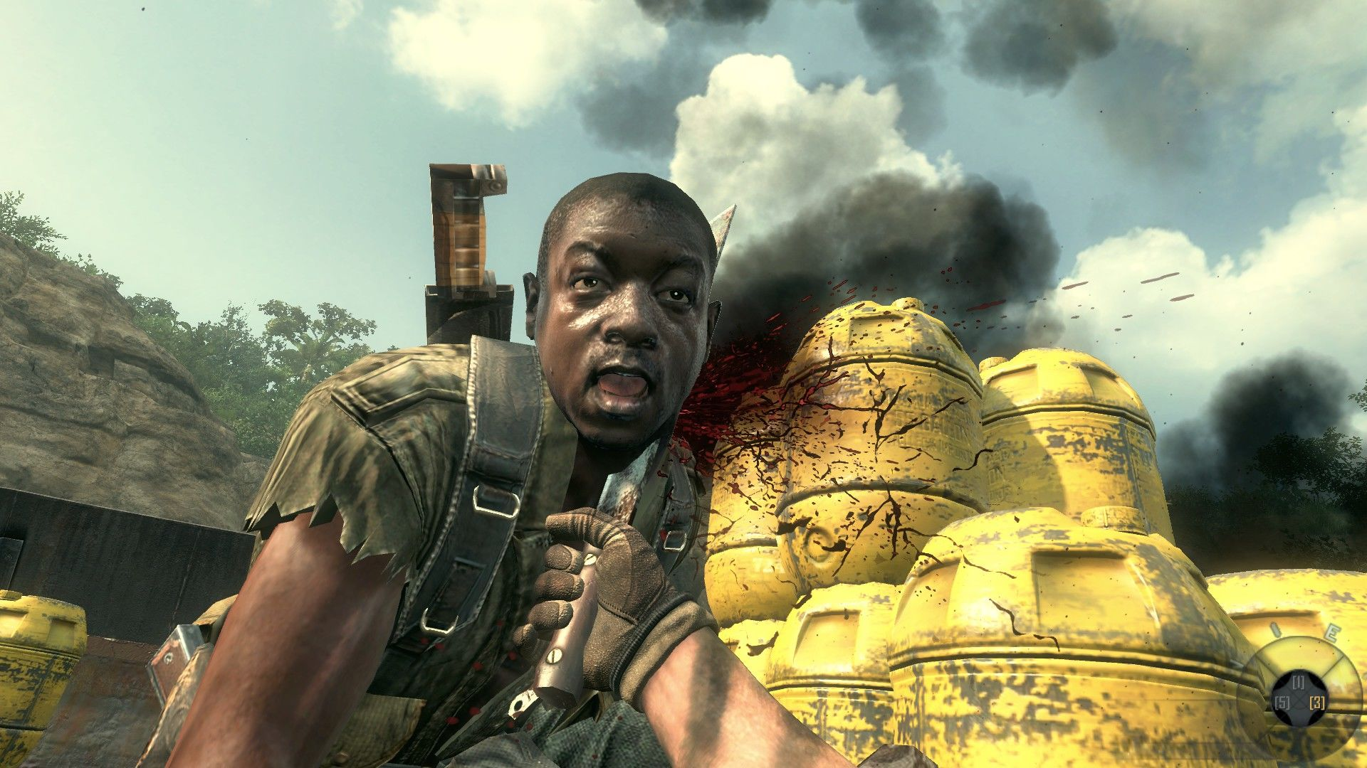 Call of Duty: Black Ops II Windows Derp