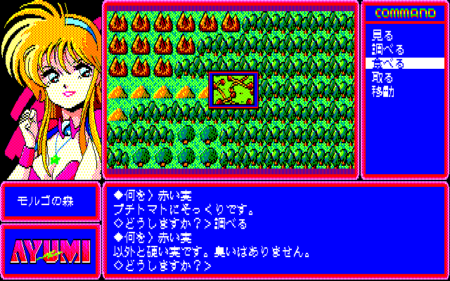 Ayumi PC-88 You'll have to discover hard-to-find locations on the world map to get the needed items
