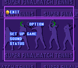 Super Final Match Tennis SNES Options